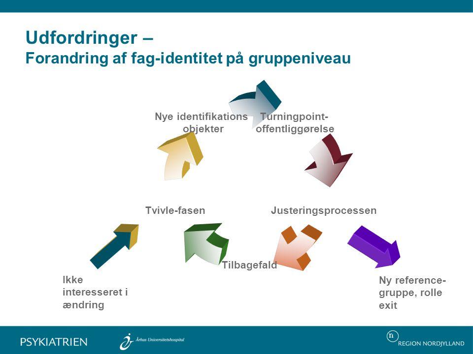 Udfordringer – Forandring af fag-identitet på gruppeniveau