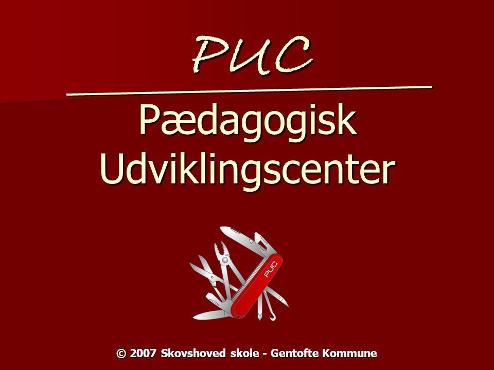 PUC Pædagogisk Udviklingscenter