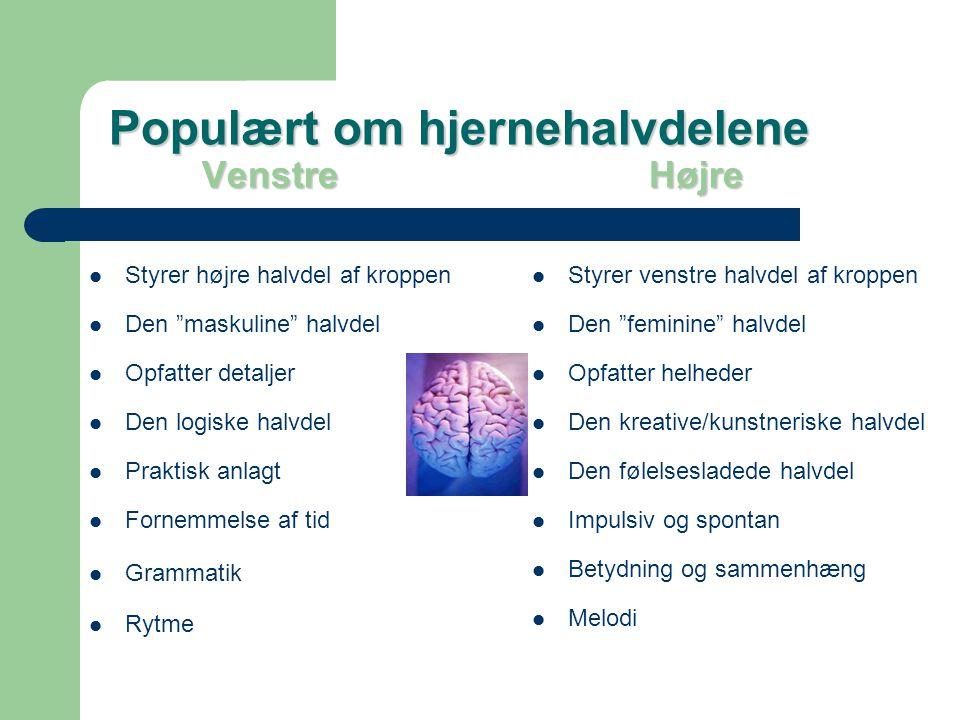 Populært om hjernehalvdelene Venstre Højre