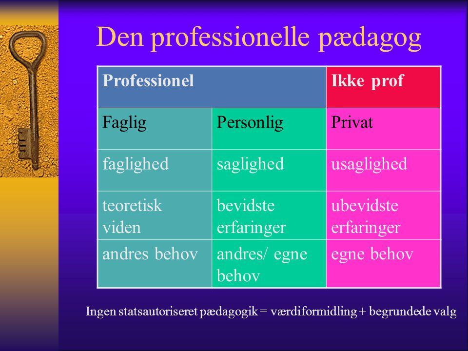 Den professionelle pædagog