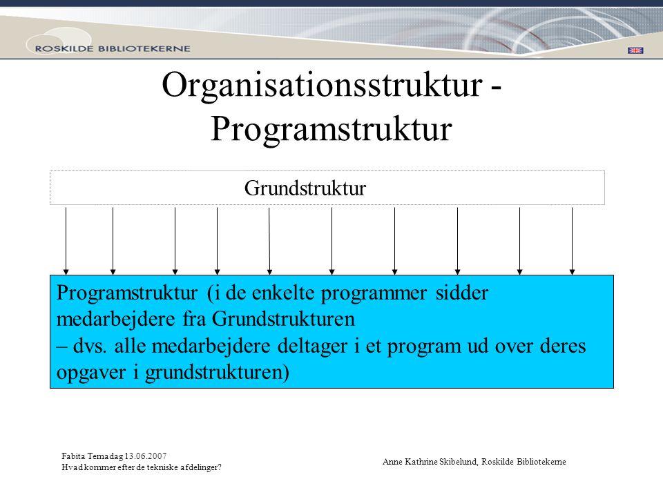 Organisationsstruktur - Programstruktur