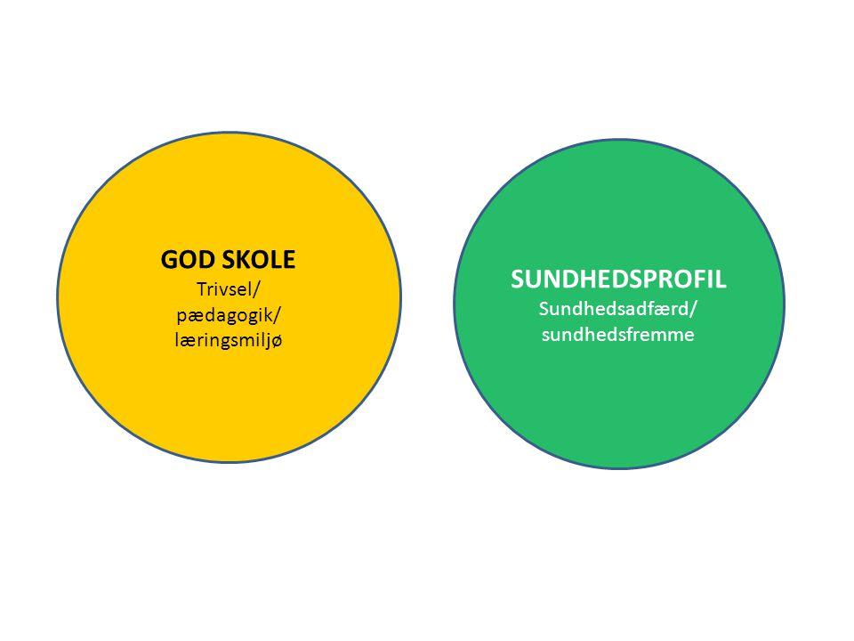 GOD SKOLE SUNDHEDSPROFIL