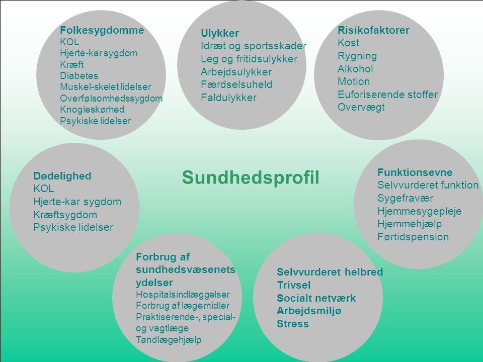 Sundhedsprofil Ulykker Folkesygdomme Risikofaktorer