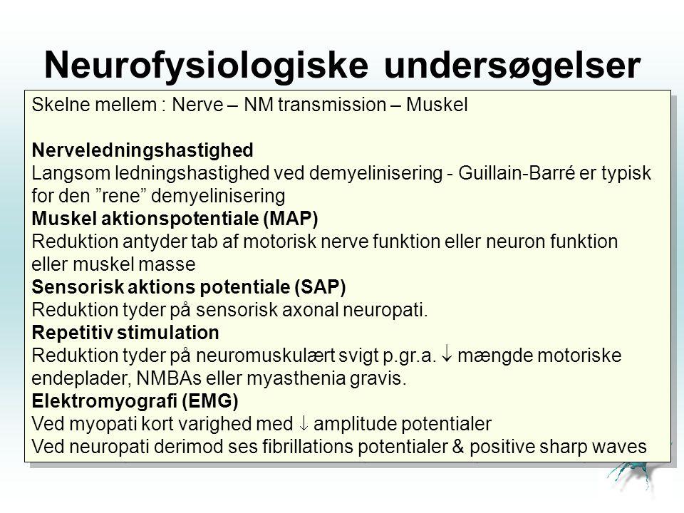 Neurofysiologiske undersøgelser