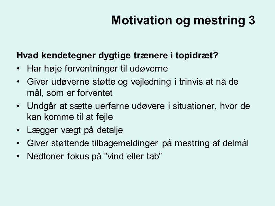 Motivation og mestring 3