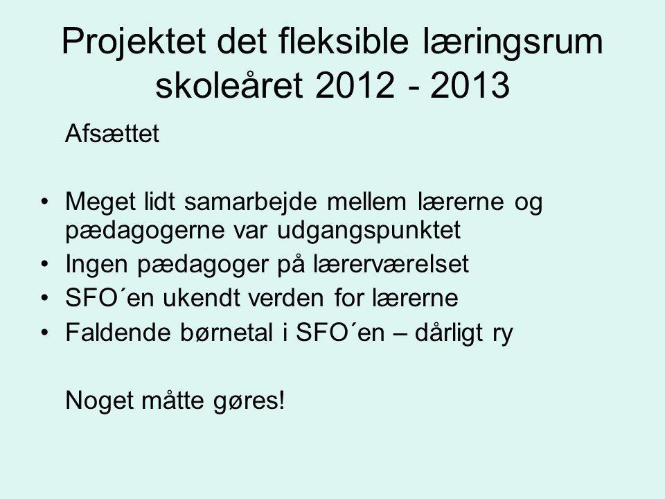 Projektet det fleksible læringsrum skoleåret 2012 - 2013