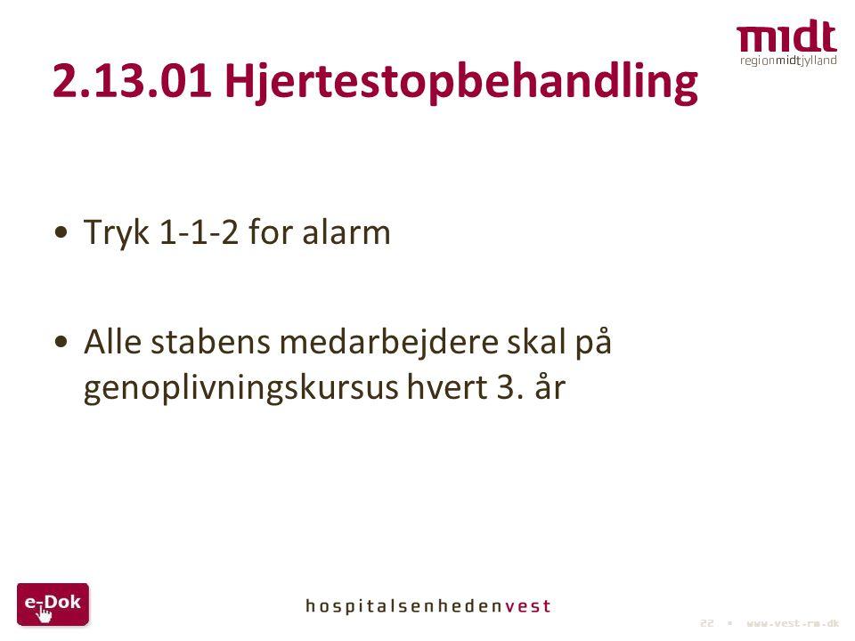 2.13.01 Hjertestopbehandling
