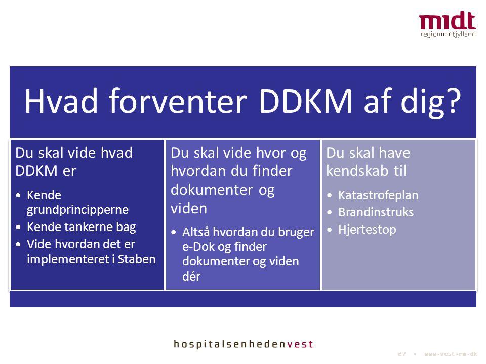 Hvad forventer DDKM af dig