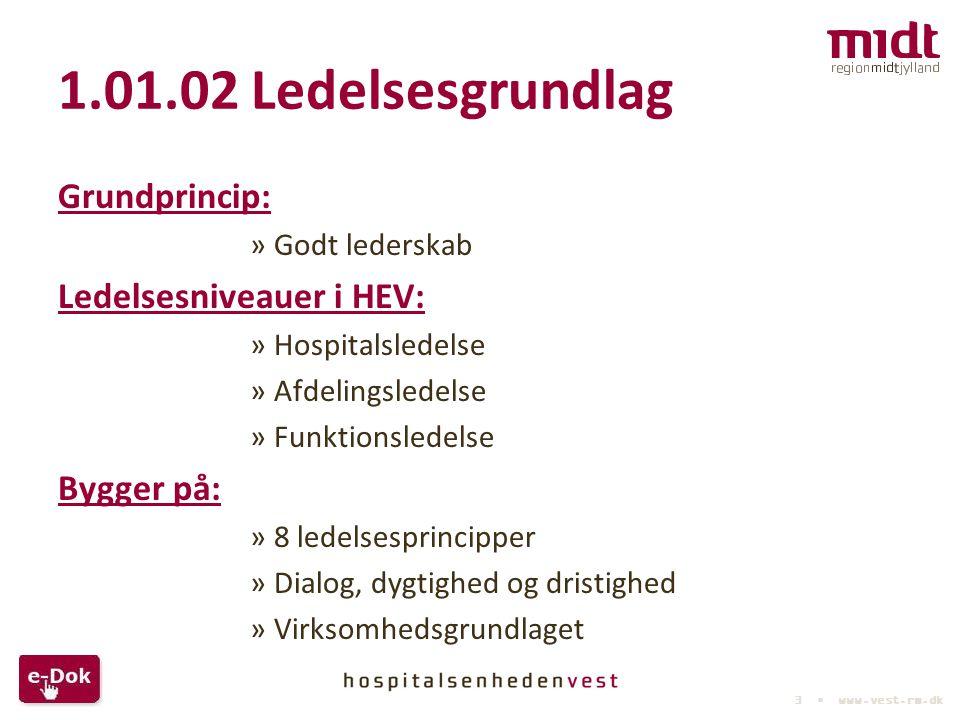 1.01.02 Ledelsesgrundlag Grundprincip: Ledelsesniveauer i HEV: