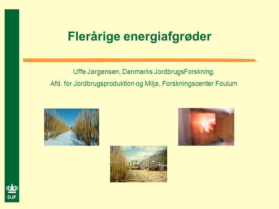 Flerårige energiafgrøder