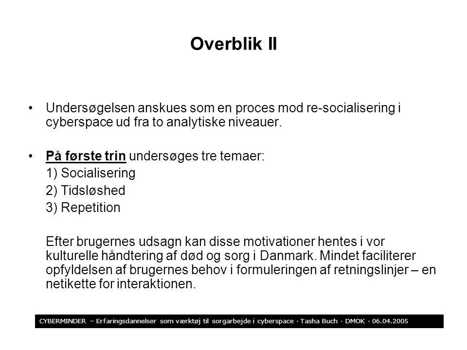 Overblik II Undersøgelsen anskues som en proces mod re-socialisering i cyberspace ud fra to analytiske niveauer.