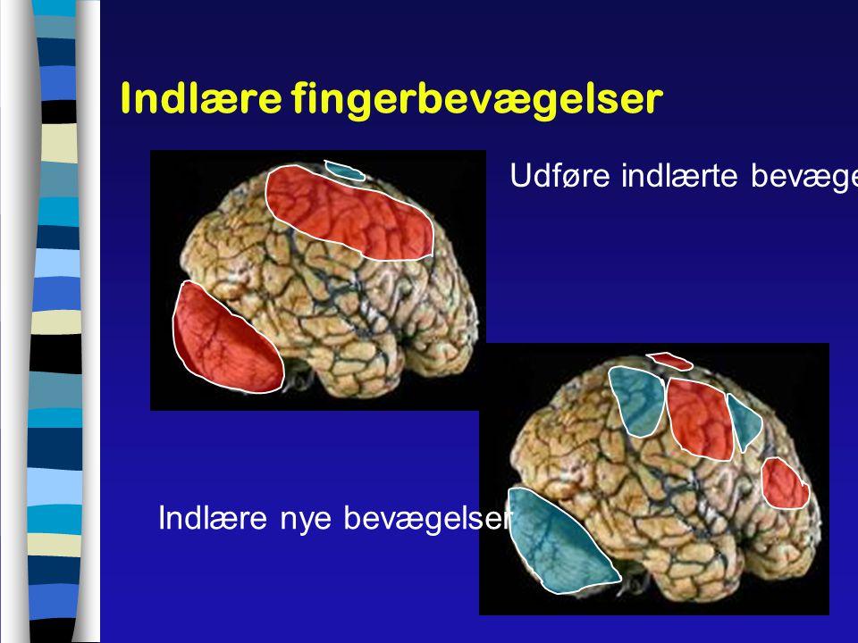 Indlære fingerbevægelser
