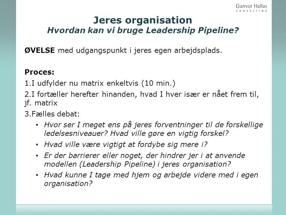 Jeres organisation Hvordan kan vi bruge Leadership Pipeline