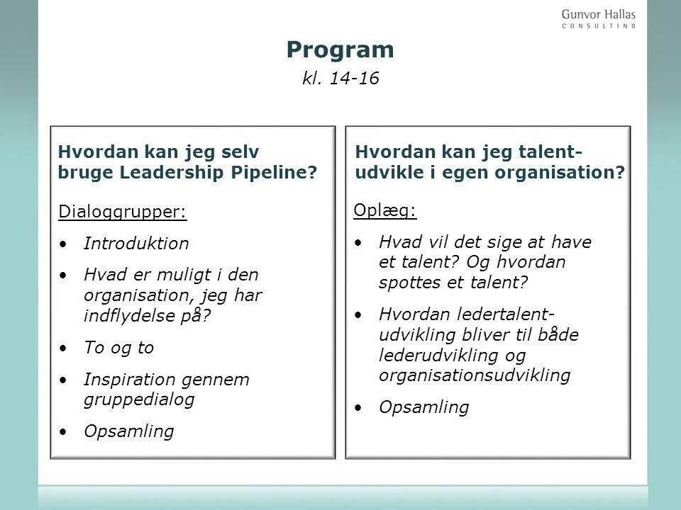 Program kl. 14-16 Hvordan kan jeg selv bruge Leadership Pipeline