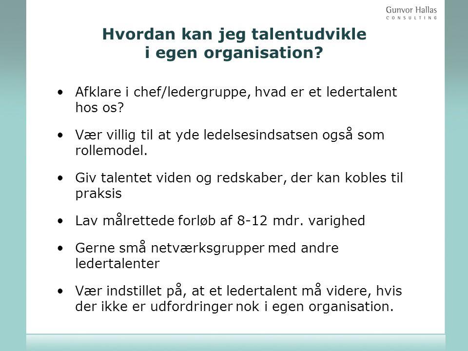 Hvordan kan jeg talentudvikle i egen organisation