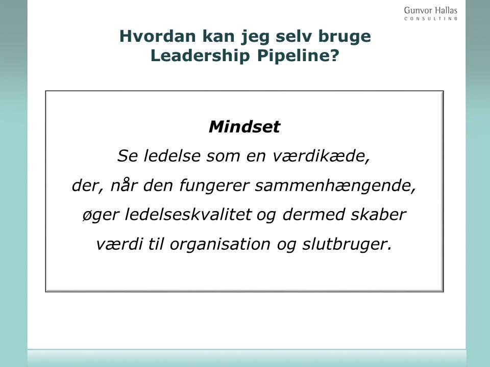 Hvordan kan jeg selv bruge Leadership Pipeline