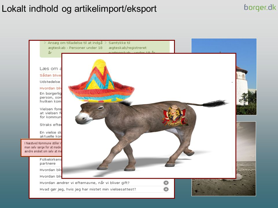 Lokalt indhold og artikelimport/eksport