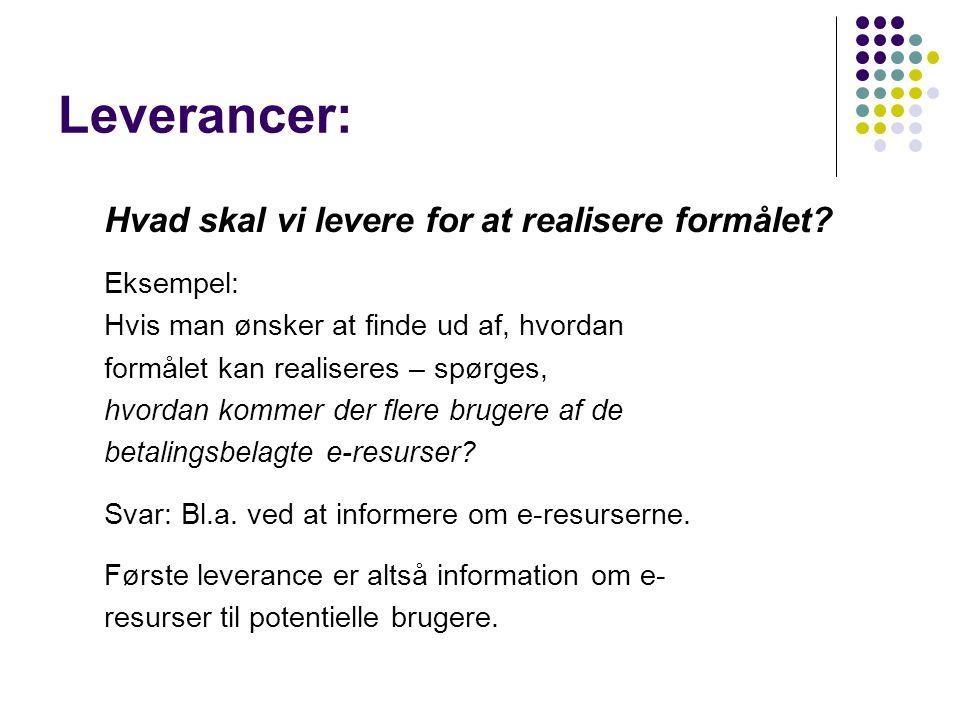 Leverancer: Hvad skal vi levere for at realisere formålet Eksempel: