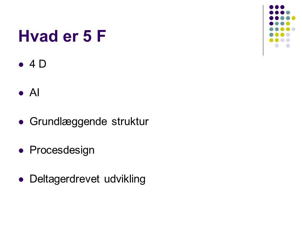 Hvad er 5 F 4 D AI Grundlæggende struktur Procesdesign