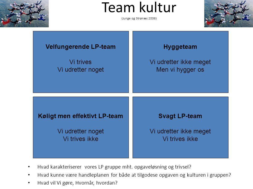 Team kultur (Junge og Strønæs 2006)