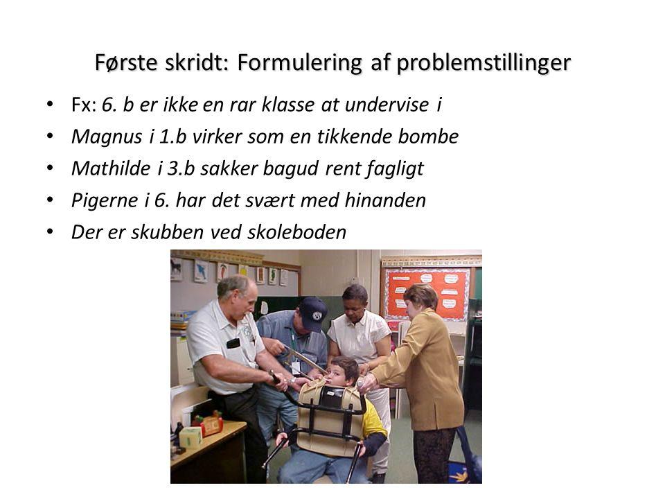 Første skridt: Formulering af problemstillinger