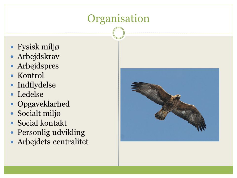 Organisation Fysisk miljø Arbejdskrav Arbejdspres Kontrol Indflydelse