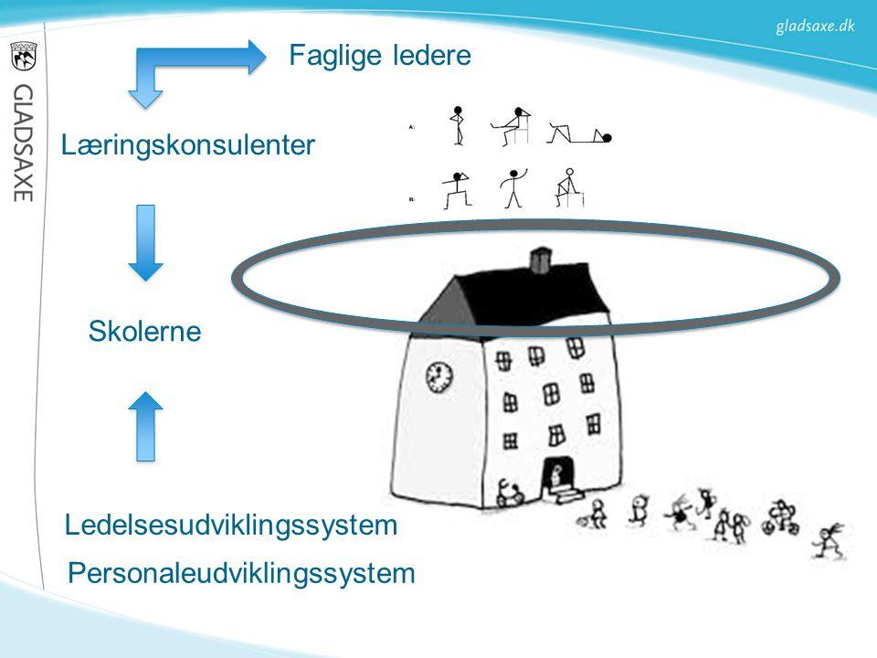 Ledelsesudviklingssystem