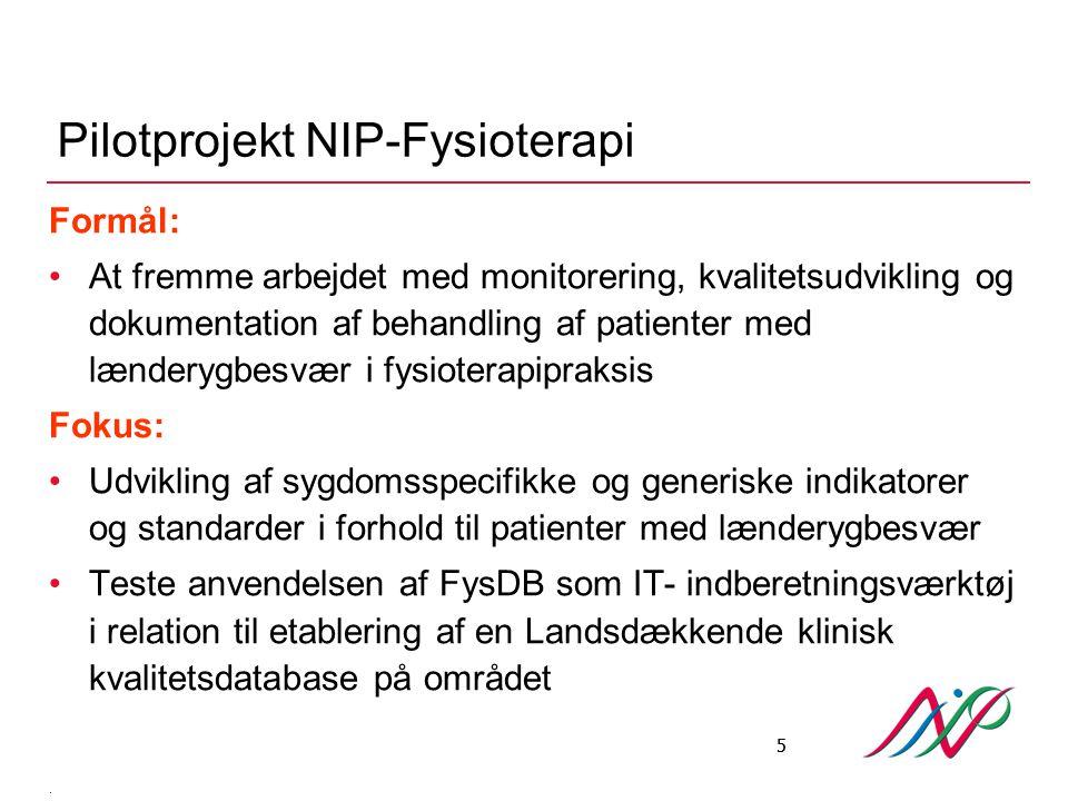 Pilotprojekt NIP-Fysioterapi