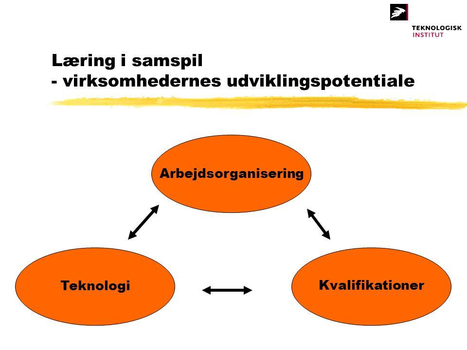 Læring i samspil - virksomhedernes udviklingspotentiale