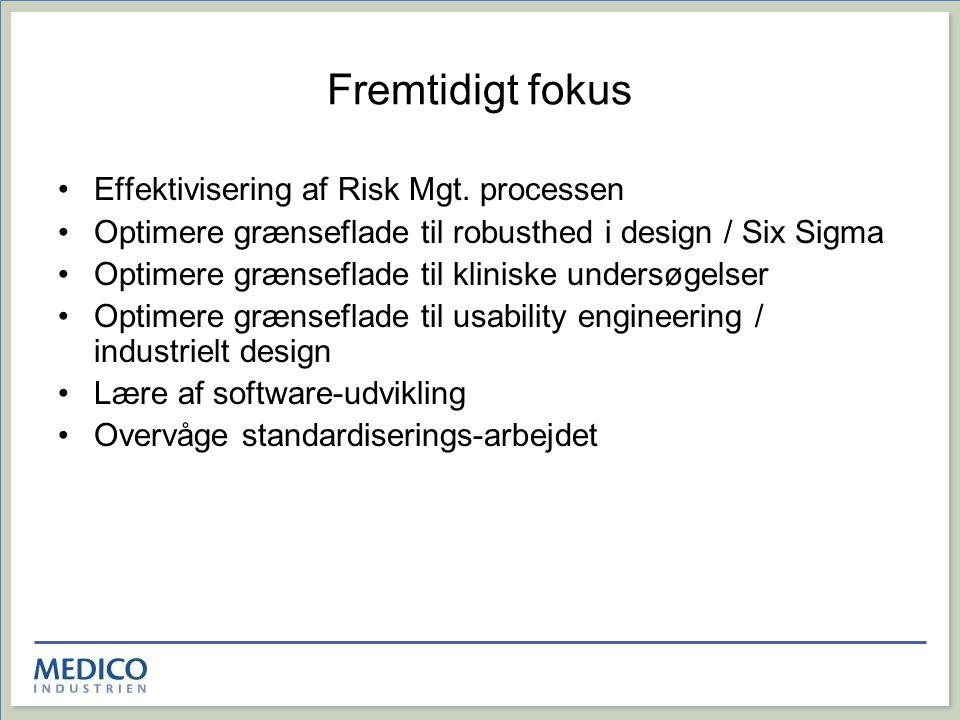 Fremtidigt fokus Effektivisering af Risk Mgt. processen