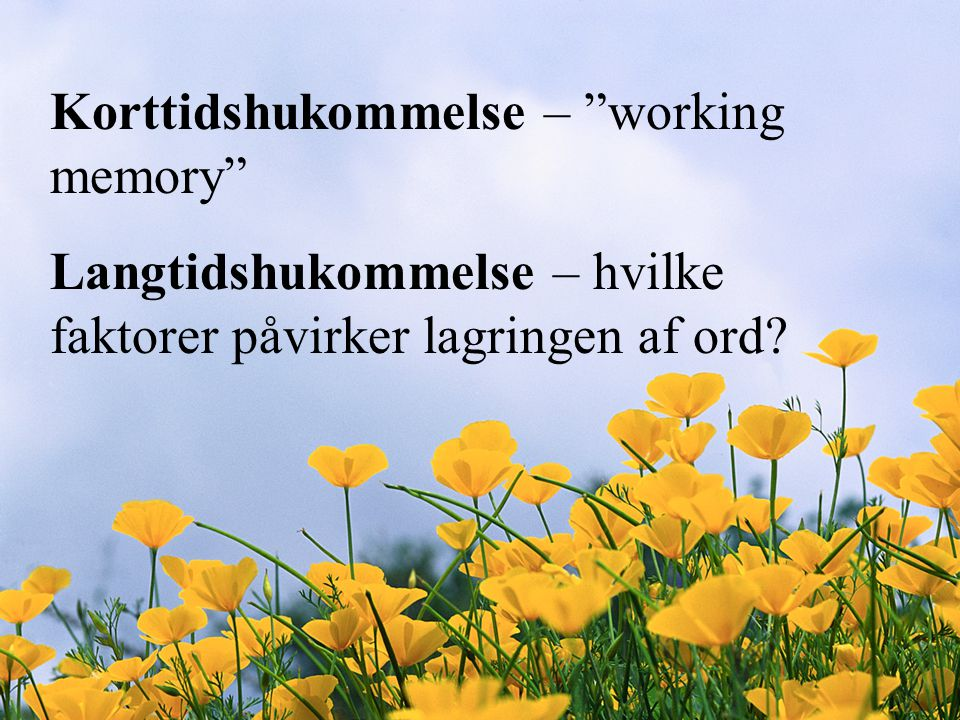 Korttidshukommelse – working memory