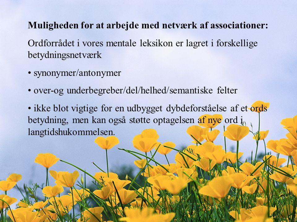 Muligheden for at arbejde med netværk af associationer: