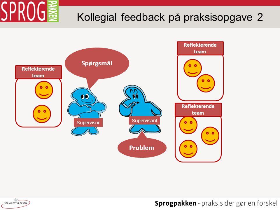 Kollegial feedback på praksisopgave 2