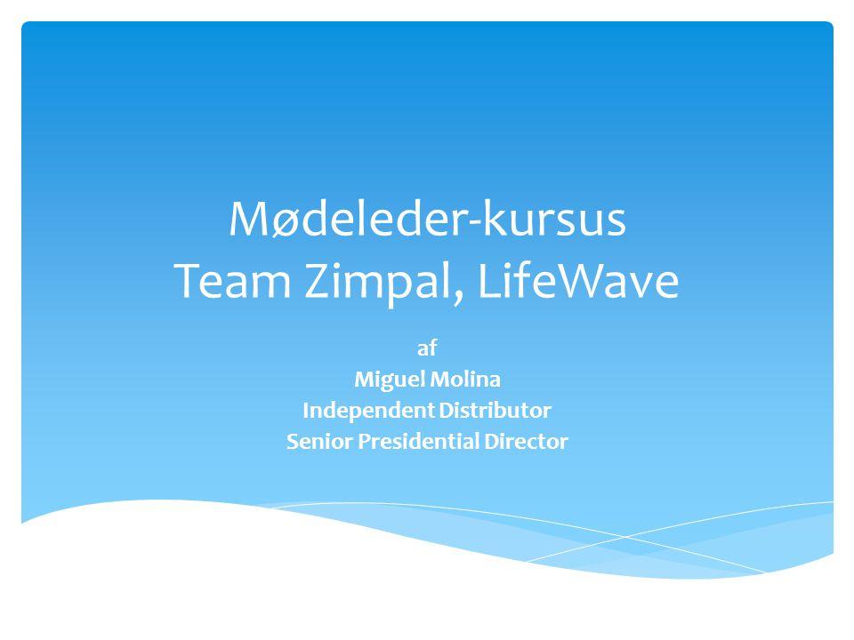 Mødeleder-kursus Team Zimpal, LifeWave