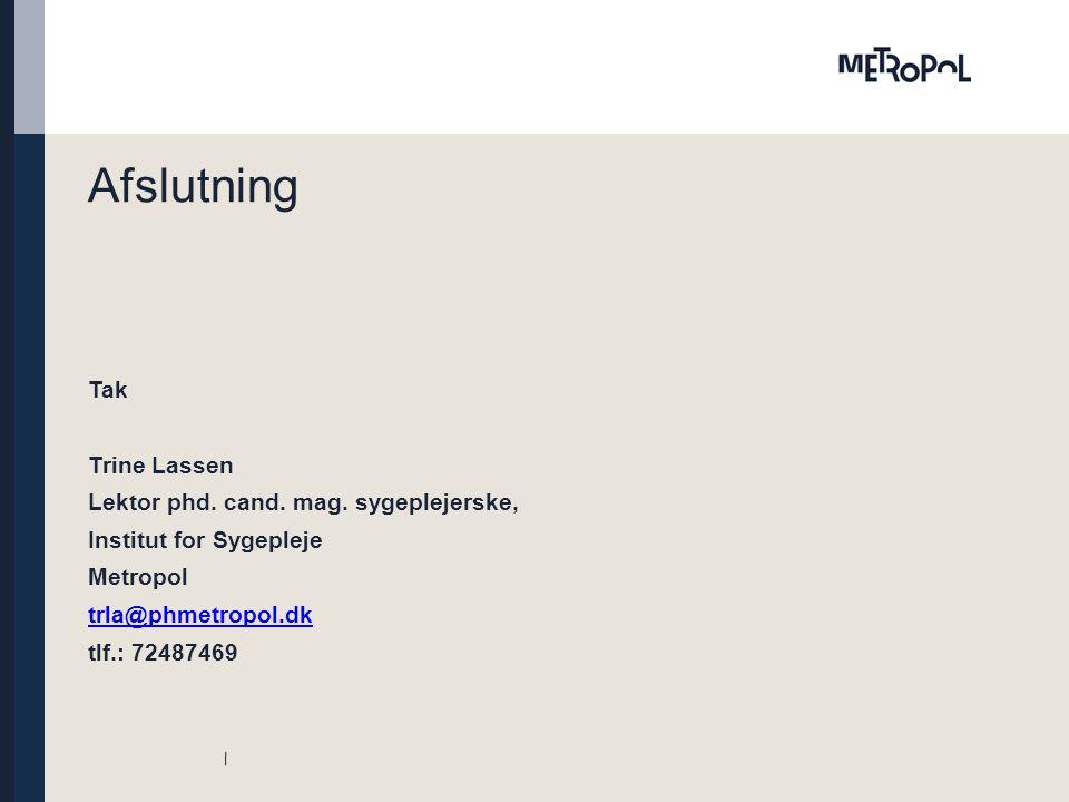 Afslutning Tak Trine Lassen Lektor phd. cand. mag.
