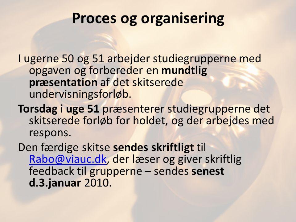 Proces og organisering