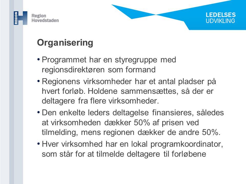 Organisering Programmet har en styregruppe med regionsdirektøren som formand.