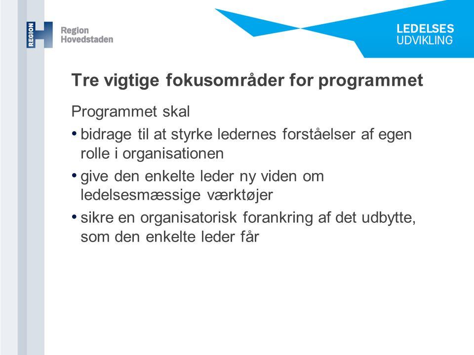 Tre vigtige fokusområder for programmet