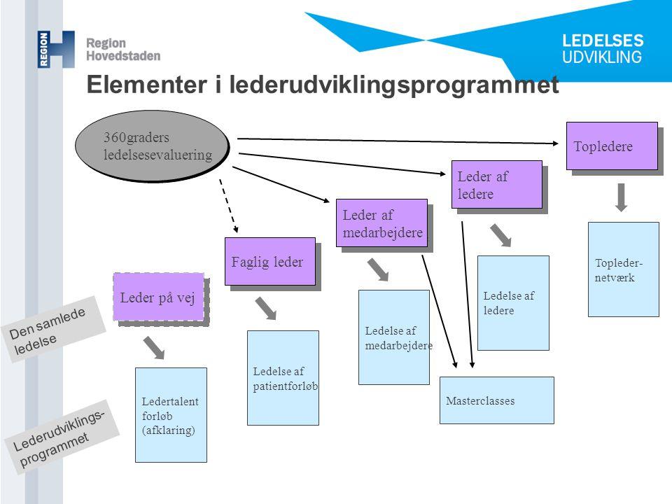 Elementer i lederudviklingsprogrammet