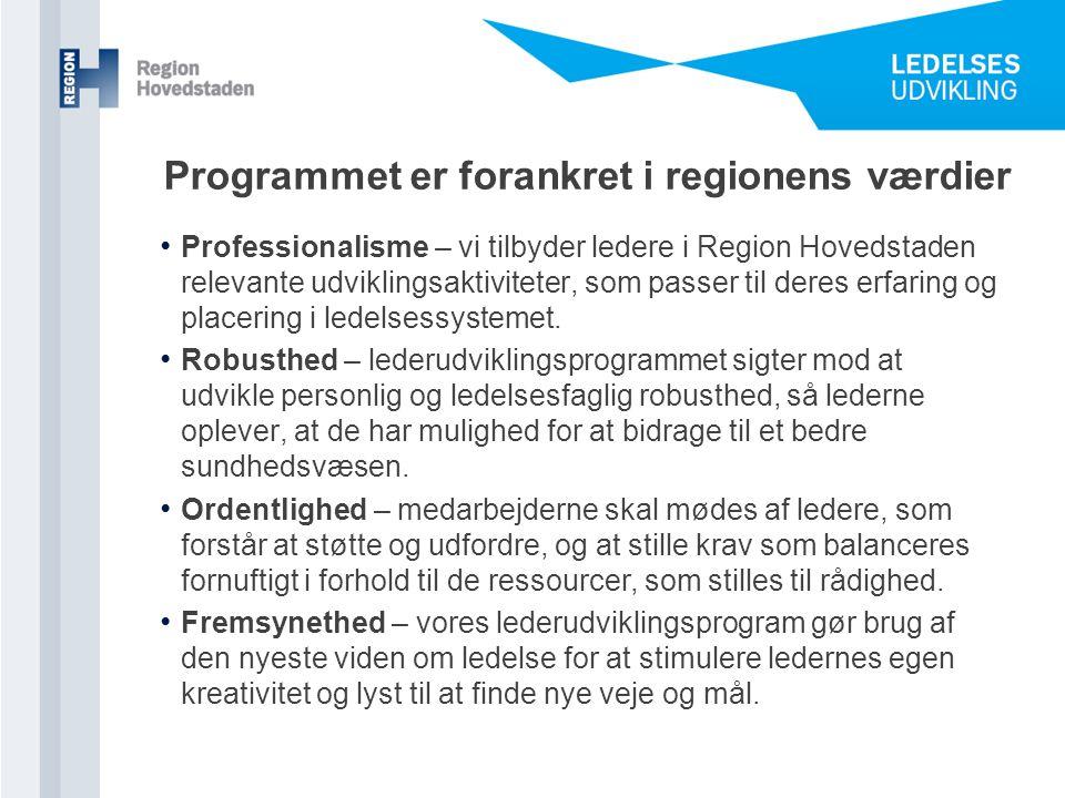 Programmet er forankret i regionens værdier