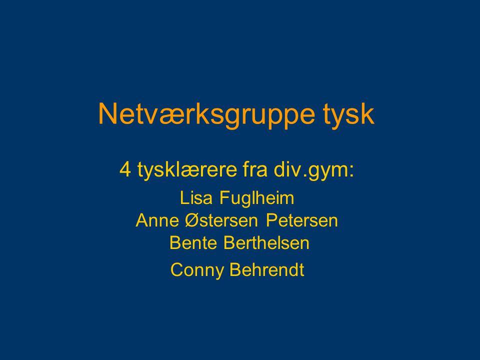Netværksgruppe tysk 4 tysklærere fra div.gym: