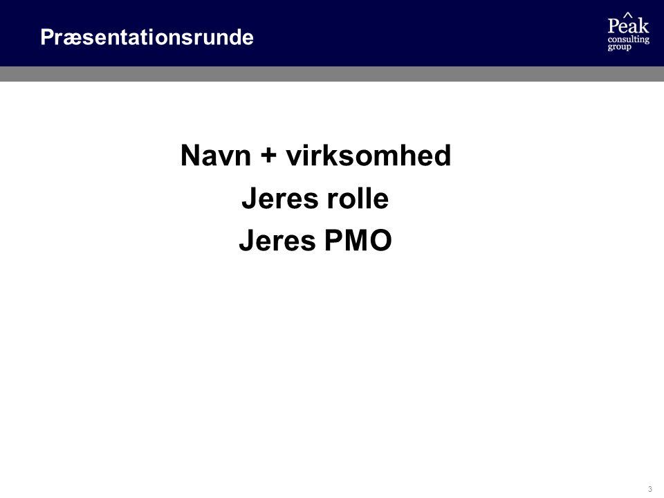 Navn + virksomhed Jeres rolle Jeres PMO