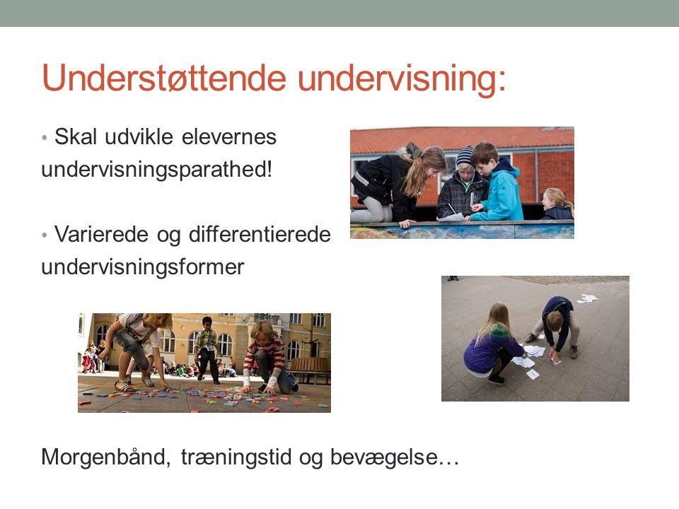 Understøttende undervisning: