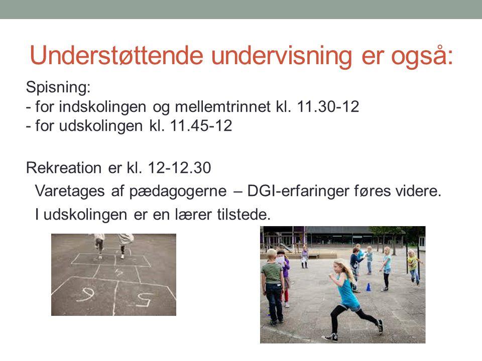 Understøttende undervisning er også: