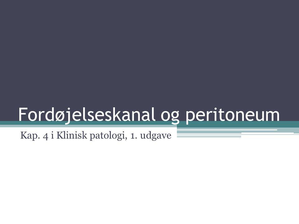 Fordøjelseskanal og peritoneum