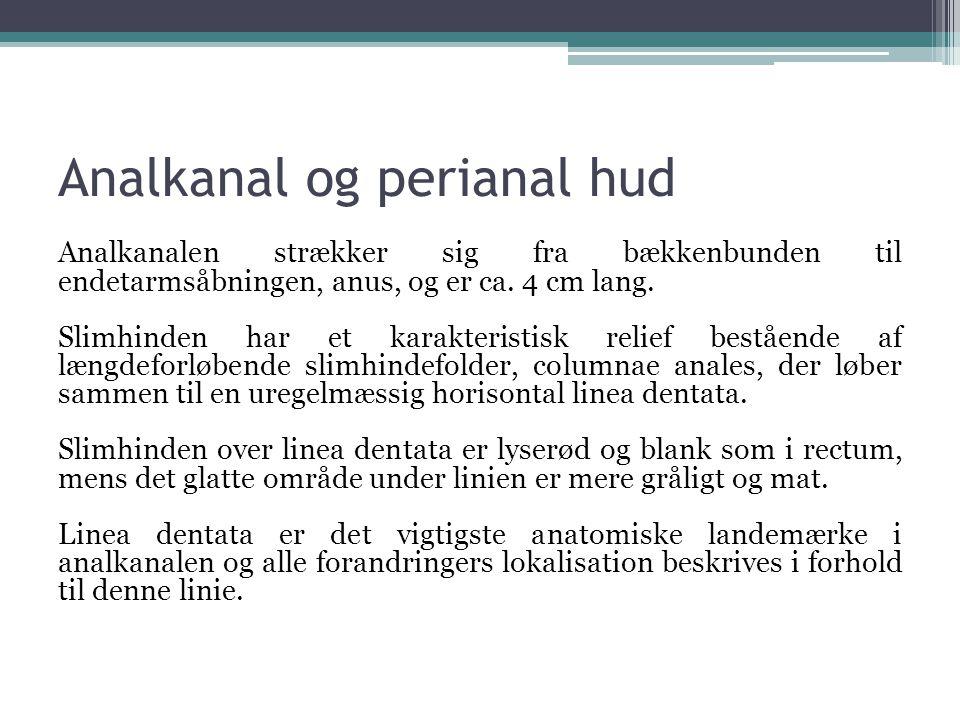 Analkanal og perianal hud