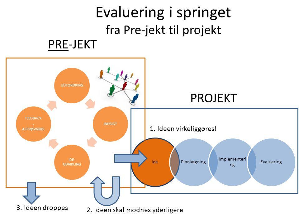 Evaluering i springet fra Pre-jekt til projekt