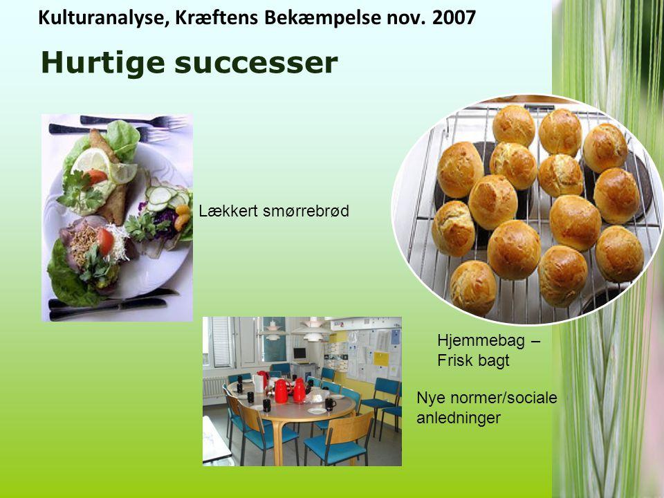 Hurtige successer Kulturanalyse, Kræftens Bekæmpelse nov. 2007
