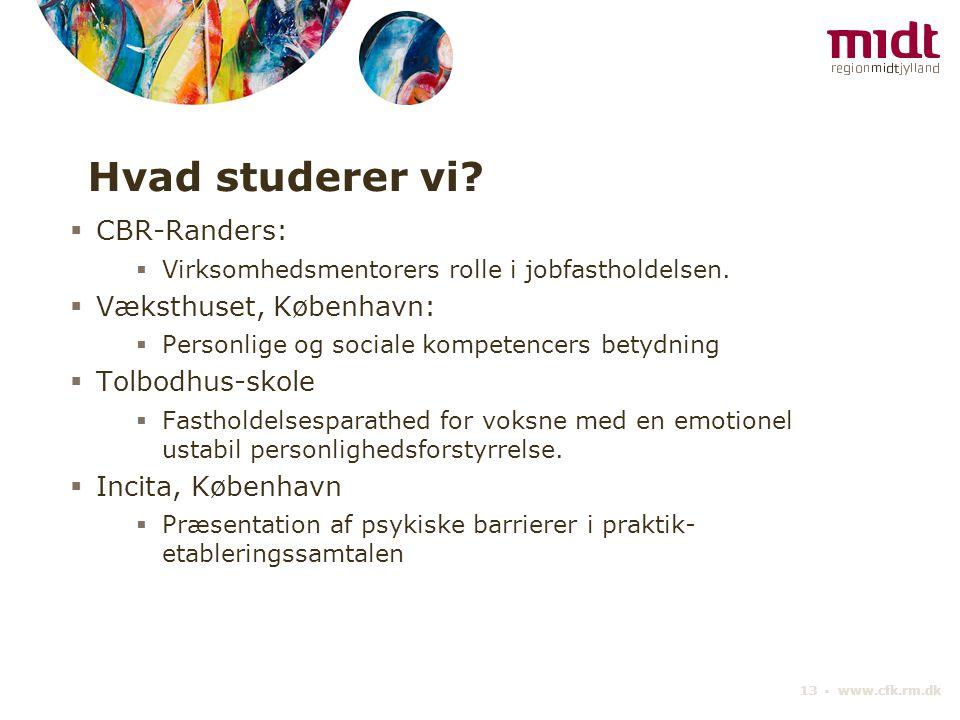 Hvad studerer vi CBR-Randers: Væksthuset, København: Tolbodhus-skole