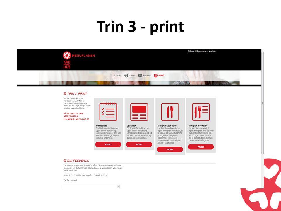 Trin 3 - print